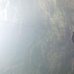 Descenso al Sótano de las Golondrinas