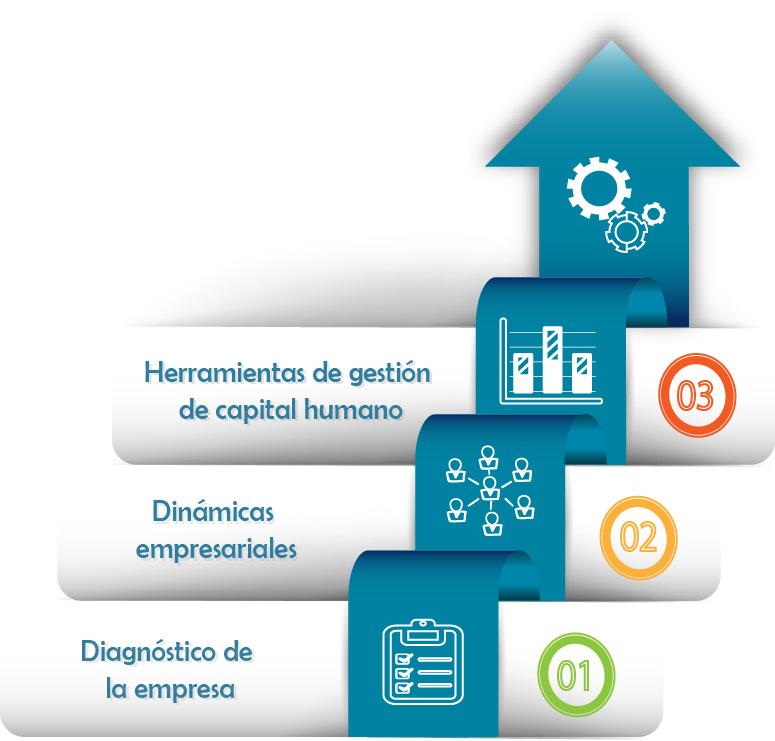 Diagrama 3 Pasos - Dinámicas Empresariales